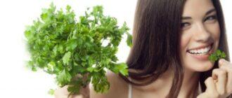 Польза петрушки для кожи лица